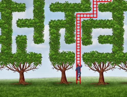Managing Radical Change Through Adaptive Leadership